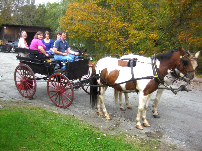 carriage-rides-horse-drawn